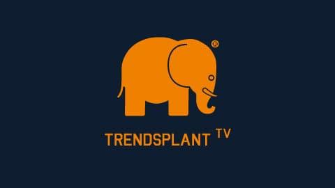 logo_vilanoise_tv